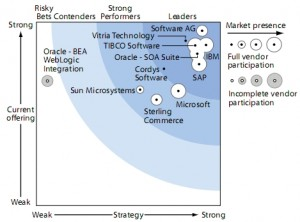 Forrester Wave Integration-Centric BPM Suites Q4 08