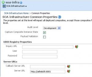 Set the Server URL